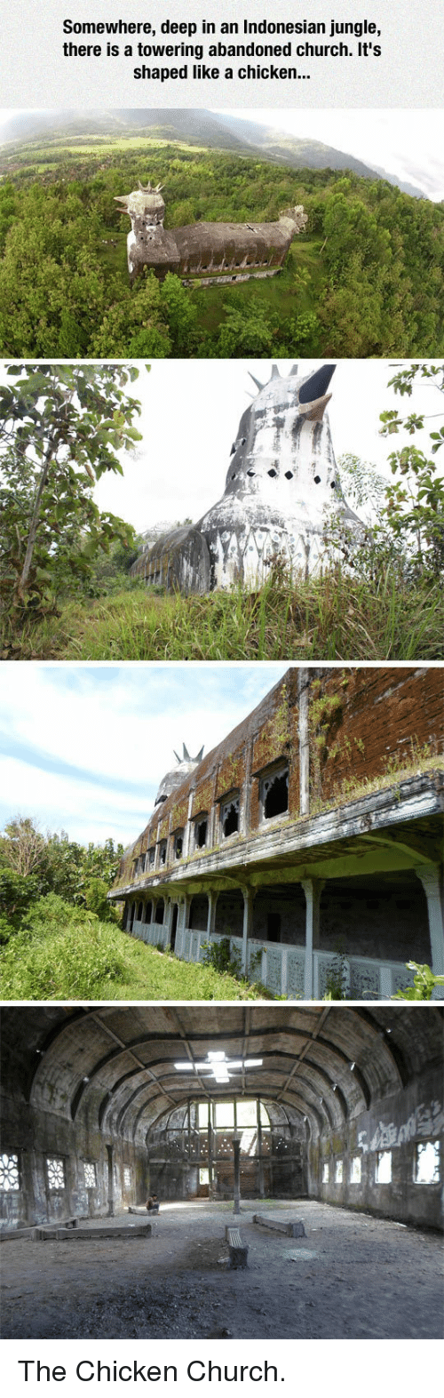 Chicken Church: Somewhere, deep in an Indonesian jungle,  there is a towering abandoned church. It's  shaped like a chicken.. <p>The Chicken Church.</p>