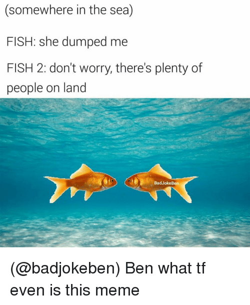 Bad, Meme, and Fish: (somewhere in the sea)  FISH: she dumped me  FISH 2: don't worry, there's plenty of  people on land  Bad Joke Ben (@badjokeben) Ben what tf even is this meme
