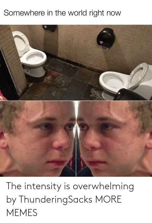 overwhelming: Somewhere in the world right now The intensity is overwhelming by ThunderingSacks MORE MEMES