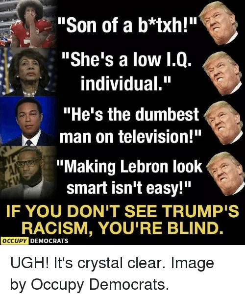 "Memes, Racism, and Image: ""Son of a b*txh!""  ""She's a low 1.Q.  individual.""  ""He's the dumbest  man on television!""  ""Making Lebron look  smart isn't easy!""  IF YOU DON'T SEE TRUMP'S  RACISM, YOU'RE BLIND  OCCUPY DEMOCRATS UGH! It's crystal clear. Image by Occupy Democrats."