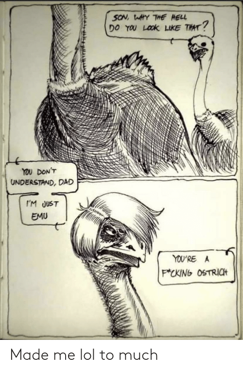 Youre A: SON, WAHY THE HELL  DO YOU LOOK LIKE THAT?  YOU DON'T  UNDERSTAND, DAD  I'M JUST  EMU  YOU'RE A  P*CKING OSTRICH Made me lol to much