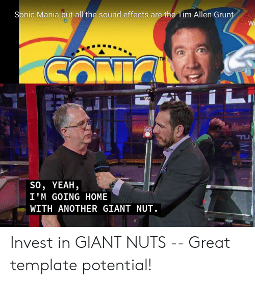 Sonic Mania: Sonic Mania but all the sound effects are the Tim Allen Grunt  Wa  тM  CONIC  LI  TU  LCIGEDBATTLE  so, YEAH,  I'M GOING HOME  WITH ANOTHER GIANT NUT.  FM Invest in GIANT NUTS -- Great template potential!