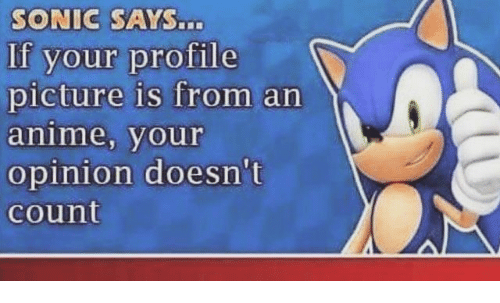Anime, Sonic, and Dank Memes: SONIC SAYSn  If your profile  picture is from an  anime, your  opinion doesn't  count