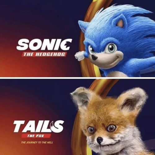 The Fox: SONIC  THE HEDGEHOG  TAILS  THE FOX  THE JOURNEY TO THE HELL