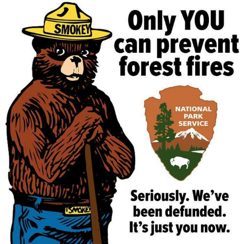 service: SOnly YOU  can prevent  forest fires  NATIONAL  PARK  SERVICE  Seriouslv. We've  been defunded.  It's just you now.