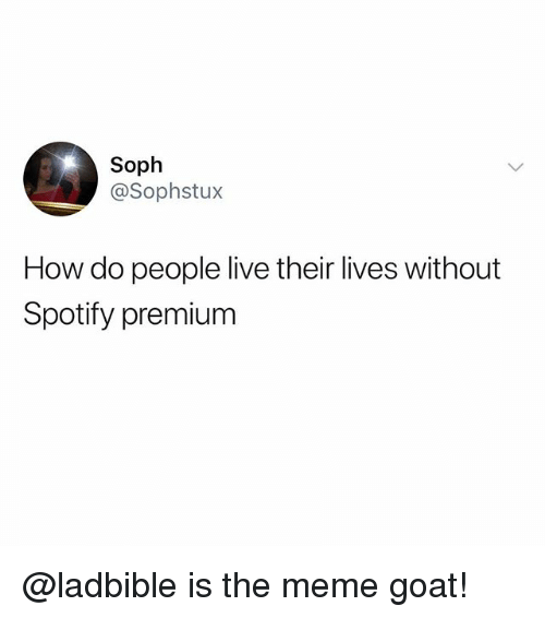 Funny, Meme, and Spotify: Soph  @Sophstux  How do people live their lives without  Spotify premium @ladbible is the meme goat!