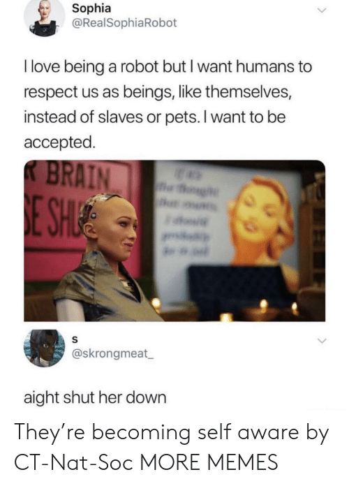 sophia: Sophia  @RealSophiaRobot  I love being a robot but I want humans to  respect us as beings, like themselves,  instead of slaves or pets. I want to be  accepted  @skrongmeat  aight shut her down They're becoming self aware by CT-Nat-Soc MORE MEMES