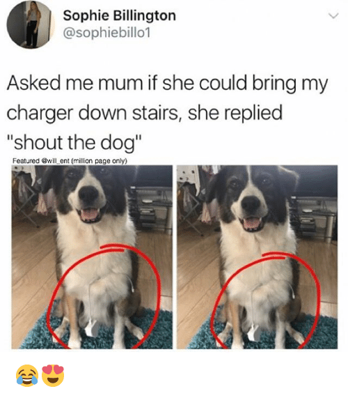 """Memes, 🤖, and Page: Sophie Billington  @sophiebillo1  Asked me mum if she could bring my  charger down stairs, she replied  """"shout the dog""""  Featured @will ent (million page only) 😂😍"""