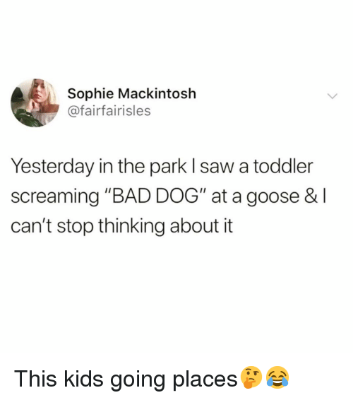 """Bad, Funny, and Saw: Sophie Mackintosh  @fairfairisles  Yesterday in the park l saw a toddler  screaming """"BAD DOG"""" at a goose & l  can't stop thinking about it This kids going places🤔😂"""