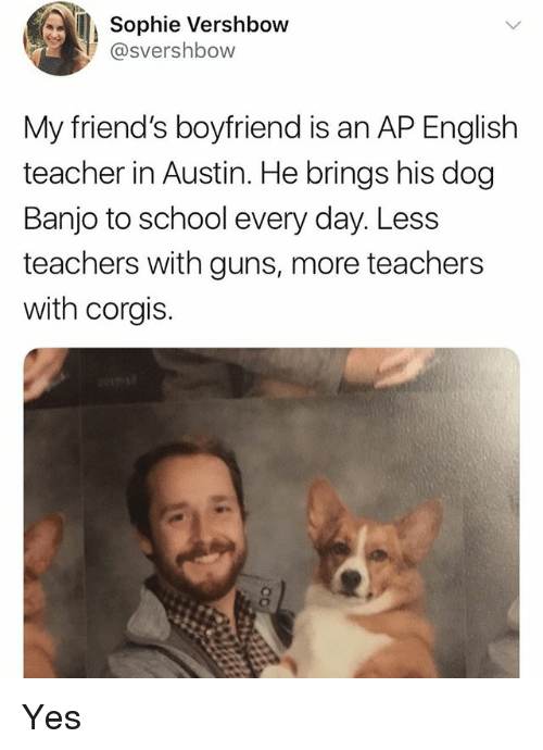 Friends, Guns, and School: Sophie Vershbow  @svershbow  My friend's boyfriend is an AP English  teacher in Austin. He brings his dog  Banjo to school every day. Less  teachers with guns, more teachers  with corgis. Yes