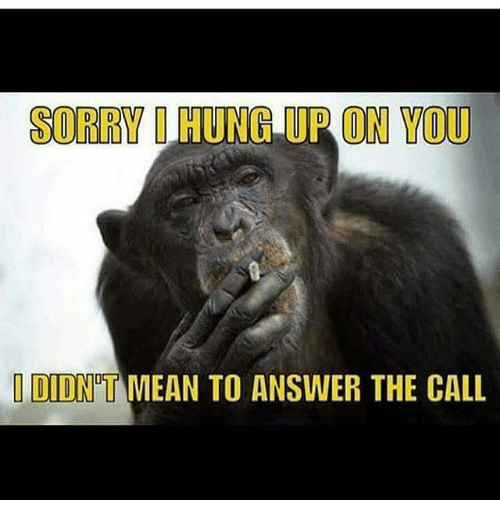 25+ Best Memes About Hung Up