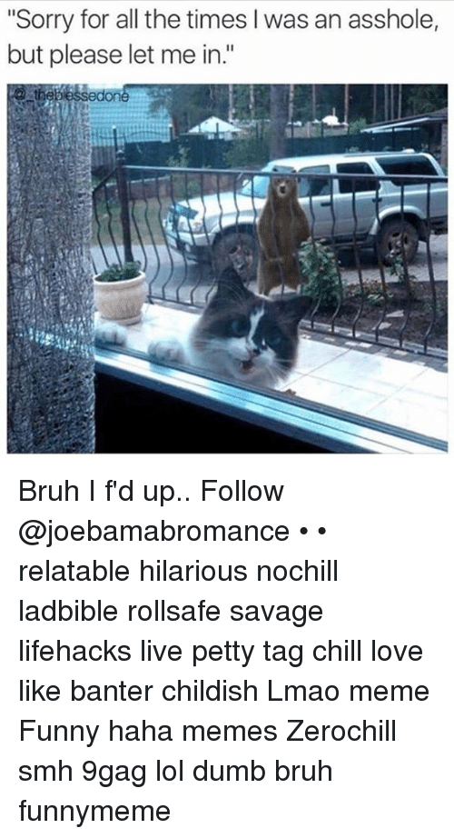 "9gag, Bruh, and Chill: ""Sorry for all the times l was an asshole,  but please let me in.""  edone Bruh I f'd up.. Follow @joebamabromance • • relatable hilarious nochill ladbible rollsafe savage lifehacks live petty tag chill love like banter childish Lmao meme Funny haha memes Zerochill smh 9gag lol dumb bruh funnymeme"