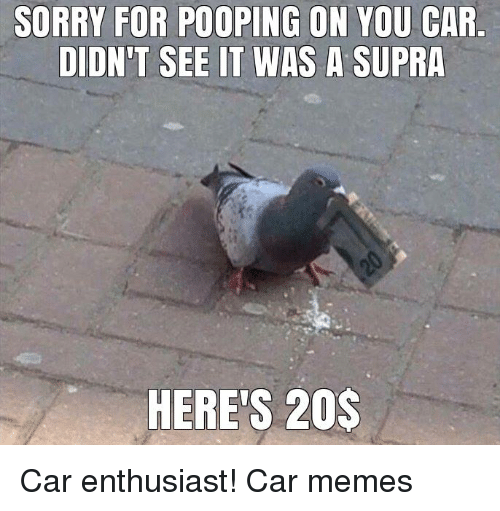 supra: SORRY FOR POOPING ON YOU CAR  DIDN'T SEE IT WAS A SUPRA  HERE'S 20$ Car enthusiast! Car memes