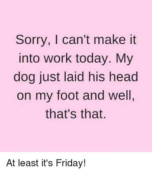 Memes, 🤖, and Dog: Sorry, I can't make it  Into Work today. My  dog just laid his head  on my foot and well,  that's that At least it's Friday!