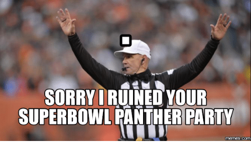 Panthers, Panther, and Superbowls: SORRY I  YOUR  SUPERBOWL PANTHER PARTY  Memes (COM