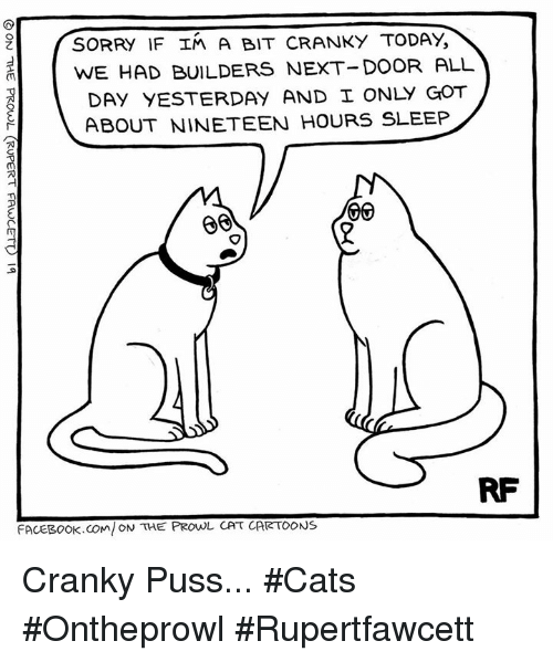 prowl: SORRY IF In A BIT cRANKY TODAY  WE HAD BUILDERS NEXT-DOOR ALL  DAY YESTERDAY AND I ONLY GOT  ABOUT NINETEEN HOURS SLEEP  VIV  RF  FACEBOOK COM ON THE PROwL CAT CARTOONS Cranky Puss... #Cats #Ontheprowl #Rupertfawcett