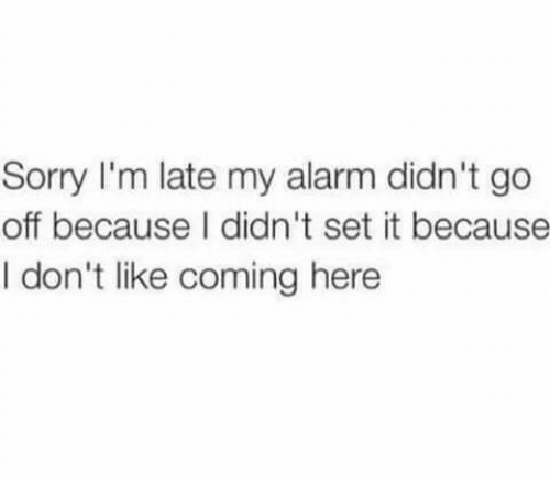 Memes, Sorry, and Alarm: Sorry I'm late my alarm didn't go  off because I didn't set it because  I don't like coming here
