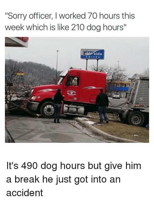 "Funny: ""Sorry officer, I worked 70 hours this  week which is like 210 dog hours""  iver  side It's 490 dog hours but give him a break he just got into an accident"