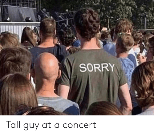 tall: SORRY Tall guy at a concert