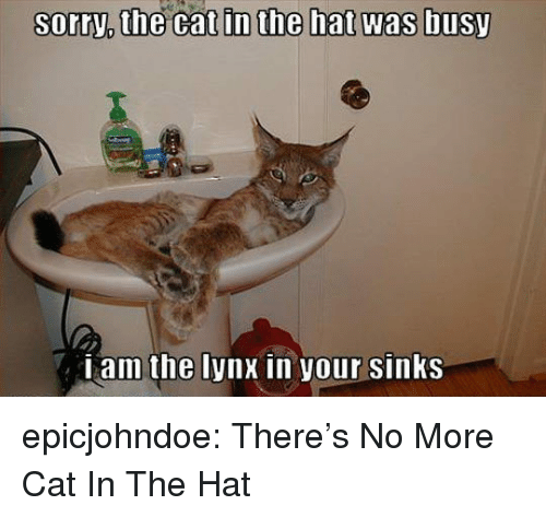 cat in the hat: sorry,  the  cat  in  the  hat  was  busy  Lam the lynx in your sinKS epicjohndoe:  There's No More Cat In The Hat