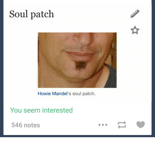 Soul, Patch, and You: Soul patch  Howie Mandel's soul patch  You seem interested  546 notes