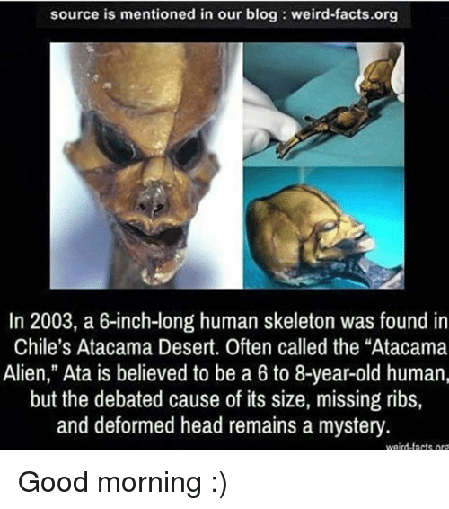 "Good: source is mentioned in our blog weird-facts.org  In 2003, a 6-inch-long human skeleton was found in  Chile's Atacama Desert. Often called the ""Atacama  Alien,"" Ata is believed to be a 6 to 8-year-old human,  but the debated cause of its size, missing ribs,  and deformed head remains a mystery  weird-tacts or Good morning :)"
