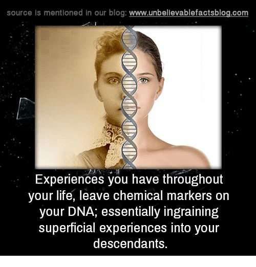 Memes, Blog, and 🤖: source Is mentioned In our blog  www.unbelievablefactsblog.com  Experiences you have throughout  your life, leave chemical markers on  your DNA, essentially ingraining  superficial experiences into your  descendants.