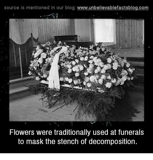 Memes, 🤖, and Funeral: source Is mentioned In our blog  www.unbelievablefactsblog.com  Flowers were traditionally used at funerals  to mask the stench of decomposition.