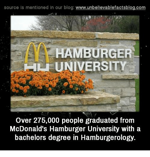 bachelors degree