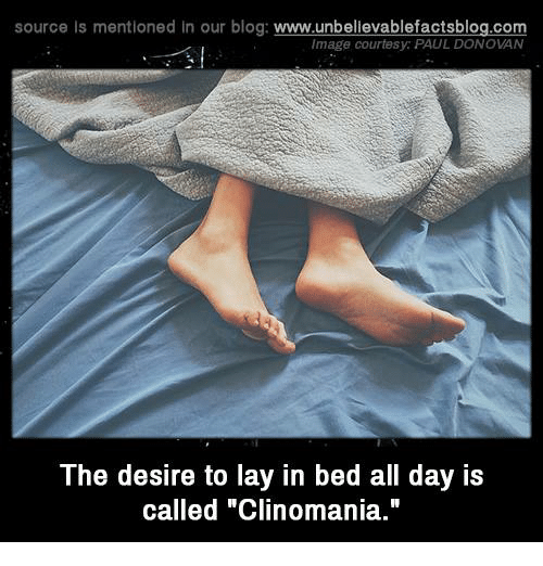 """Lay's, Memes, and Blog: source Is mentioned In our blog  www.unbelievablefactsblog.com  Image courtesy: PAUL DONOVAN  The desire to lay in bed all day is  called """"Clinomania."""""""