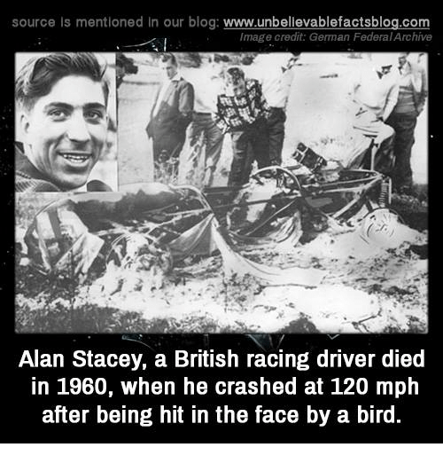 Memes, 🤖, and German: source Is mentioned In our blog  www.unbelievablefactsblog.com  Image credit: German FederalArchive  Alan Stacey, a British racing driver died  in 1960, when he crashed at 120 mph  after being hit in the face by a bird.