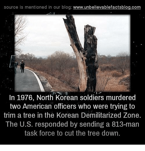 Memes, Soldiers, and Blog: source is mentioned in our blog  www.unbelievablefactsblog.com  In 1976, North Korean soldiers murdered  two American officers who were trying to  trim a tree in the Korean Demilitarized Zone  The U.S. responded by sending a 813-man  task force to cut the tree down