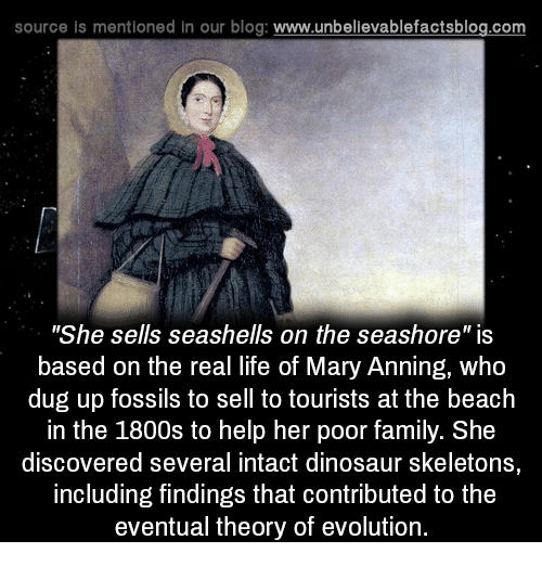 "Dinosaur, Family, and Life: source is mentioned in our blog  www.unbelievablefactsblog.com  ""She sells seashells on the seashore"" is  based on the real life of Mary Anning, who  dug up fossils to sell to tourists at the beach  in the 1800s to help her poor family. She  discovered several intact dinosaur skeletons  including findings that contributed to the  eventual theory of evolution."