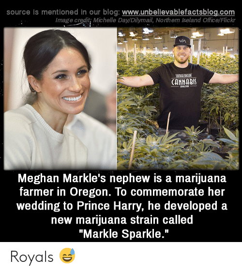 """Prince Harry: source is mentioned in our blog: www.unbelilevablefactsblog.co  Image credit; Michelle Day/Dilymail, Northern Ireland Office/Flick  CANNABI  Meghan Markle's nephew is a marijuana  farmer in Oregon. To commemorate her  wedding to Prince Harry, he developed a  new marijuana strain called  """"Markle Sparkle."""" Royals 😅"""