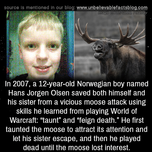 """World of Warcraft: source is mentioned in our blog: www.unbellevablefactsblog.com  In 2007, a 12-year-old Norwegian boy named  Hans Jorgen Olsen saved both himself and  his sister from a vicious moose attack using  skills he learned from playing World of  Warcraft: """"taunt"""" and """"feign death."""" He first  taunted the moose to attract its attention and  let his sister escape, and then he played  dead until the moose lost interest."""