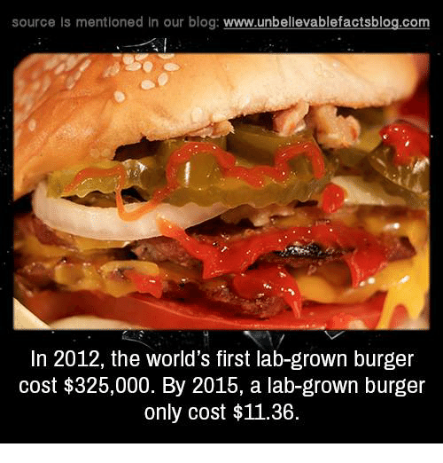 Memes, Blog, and 🤖: source Is mentioned in our blog: www.unbellevablefactsblog.com  In 2012, the world's first lab-grown burgeir  cost $325,000. By 2015, a lab-grown burger  only cost $11.36.