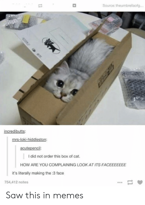 loki: Source: theumbrellaofg...  incredibutts:  mrs-loki-hiddleston:  acutepencil:  I did not order this box of cat.  HOW ARE YOU COMPLAINING LOOK AT ITS FACEEEEEEE  it's literally making the :3 face  754,412 notes  11  11 Saw this in memes