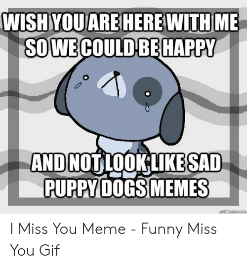 i miss you meme: SOWECOULD BEHAPPY  AND NOT LOOKLIKESAD  PUPPY DOGS MEMES I Miss You Meme - Funny Miss You Gif