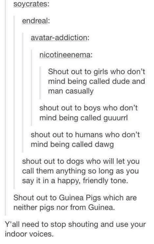 Dogs, Dude, and Friends: soy crates:  endreal:  avatar addiction  nicotineenema  Shout out to girls who don't  mind being called dude and  man casually  shout out to boys who don't  mind being called guuurrl  shout out to humans who don't  mind being called dawg  shout out to dogs who will let you  call them anything so long as you  say it in a happy, friendly tone.  Shout out to Guinea Pigs which are  neither pigs nor from Guinea.  Y'all need to stop shouting and use your  indoor voices