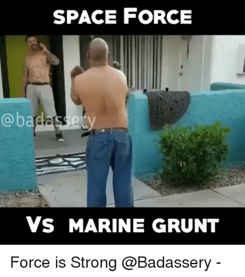 Space Force: SPACE FORCE  @badasery  Vs MARINE GRUNT Force is Strong @Badassery -