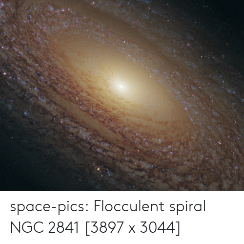 spiral: space-pics:  Flocculent spiral NGC 2841 [3897 x 3044]