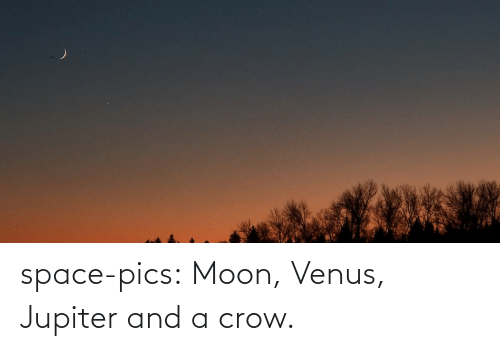 Jupiter: space-pics:  Moon, Venus, Jupiter and a crow.