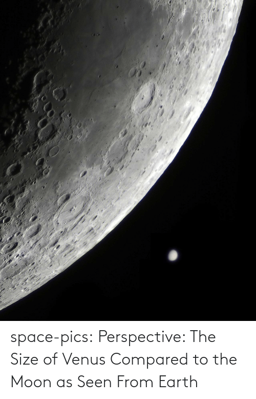 To The Moon: space-pics:  Perspective: The Size of Venus Compared to the Moon as Seen From Earth