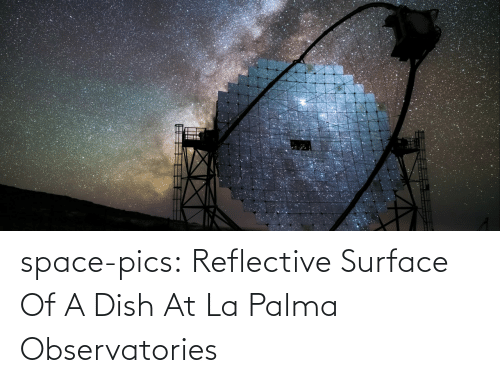 surface: space-pics:  Reflective Surface Of A Dish At La Palma Observatories