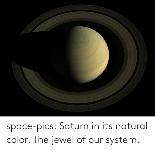 Tumblr, Blog, and Saturn: space-pics:  Saturn in its natural color. The jewel of our system.