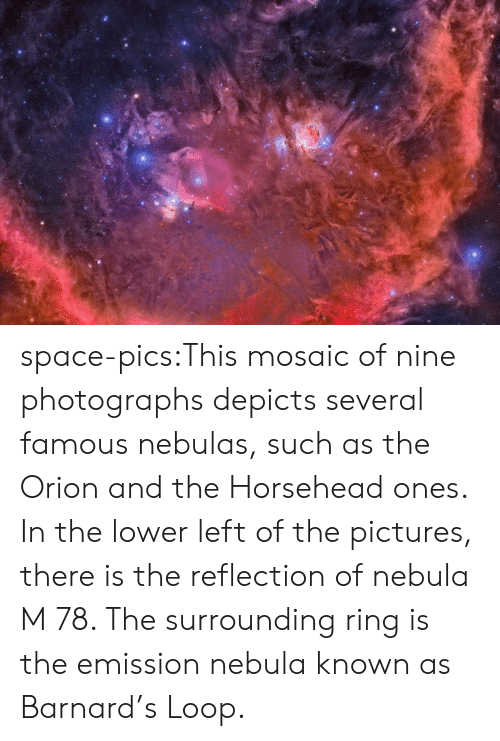 nebulas: space-pics:This mosaic of nine photographs depicts several famous nebulas, such as the Orion and the Horsehead ones. In the lower left of the pictures, there is the reflection of nebula M 78. The surrounding ring is the emission nebula known as Barnard's Loop.