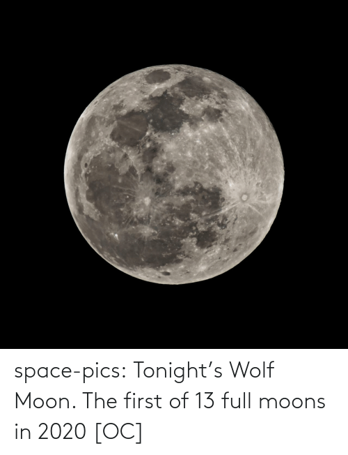 Wolf: space-pics:  Tonight's Wolf Moon. The first of 13 full moons in 2020 [OC]