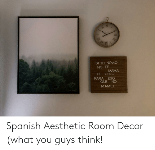 You Guys: Spanish Aesthetic Room Decor (what you guys think!