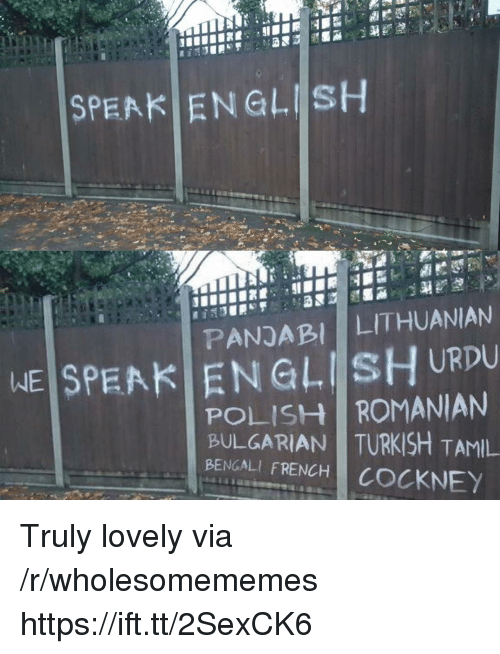 Bengali: SPEAK ENGLISH  PANDABI LITHUANIAN  WEİSPEAKI EN GLIİsHURDU  POLISH ROMANIAN  BULGARIAN TURKISH TAMIL  BENGALI FRENCH COCKNEY Truly lovely via /r/wholesomememes https://ift.tt/2SexCK6