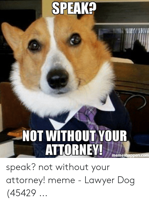 Lawyer Meme: SPEAK?  NOT WITHOUT YOUR  ATTORNEY  memeshappen.com speak? not without your attorney! meme - Lawyer Dog (45429 ...